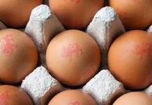 Salmonella Food Poisoning Alert Issued over British Lion Eggs!